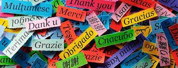 Alpha lingmind - apprendre des langues étrangères - Amazon - comprimés - effets