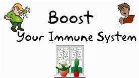 Immuniti+ - meilleure résistance – comment utiliser – forum – en pharmacie