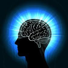Neurocyclin - pour une meilleure mémoire - site officiel - composition - avis