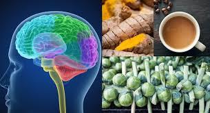 Neurocyclin - action - pas cher - en pharmacie