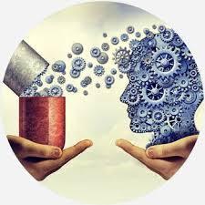 Neurocyclin - pour une meilleure mémoire - comment utiliser - effets - France