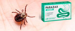 Parazax Complex - site officiel - dangereux - composition