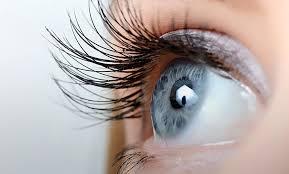 Glasses Binoculars ZOOMIES – loupes - action – pas cher – en pharmacie