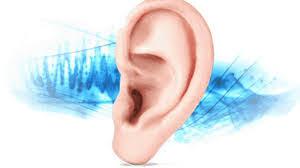 Audisin Maxi Ear Sound - forum - temoignage - avis - composition