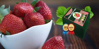 Home Berry Box - mode d'emploi - composition - achat - pas cher